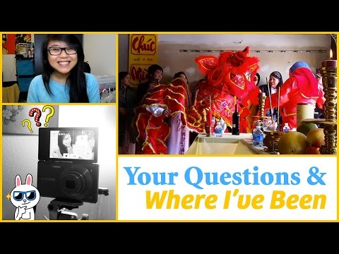 Q&A, Lunar New Year Vlog & Where I've Been!