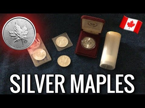 Why I Love Canadian Silver Maple Leafs | Precious Metal Coin/Bar Stacking | Low Premium, .9999 Fine