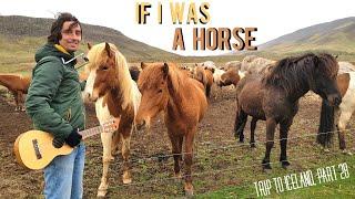 If I was A Horse (original) - Federico Borluzzi - Trip to Iceland, part 28