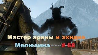 Прохождение The Witcher 3: Wild Hunt Мастер арены и эхидна # 68
