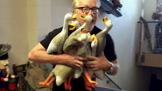 Adam Savage MYTHBUSTS The Duck Army | What's Trending Now