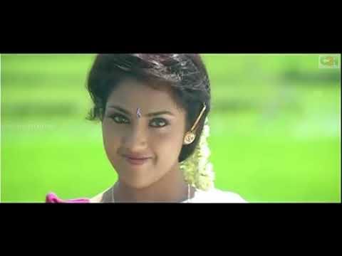 Poongatril Song | bharathi kannamma Movie | Cheran | R. Parthiepan | Meena | Vadivelu.