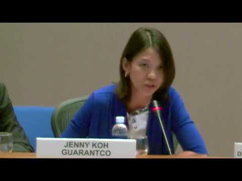 Jenny Koh from GuarantCo Speaks on Climate Action in the Private Sector