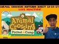 Animal Crossing Pocket Camp Mobile - Nintendo Direct 10/24/17 LIVE REACTION!