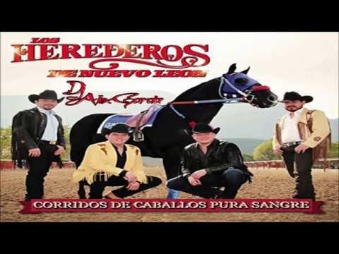 Corridos De Caballos Pura Sangre Los Herederos De Nuevo Leon CD Mix 2015