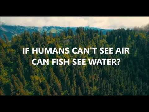 If Humans Can't See Air Can Fish See Water?