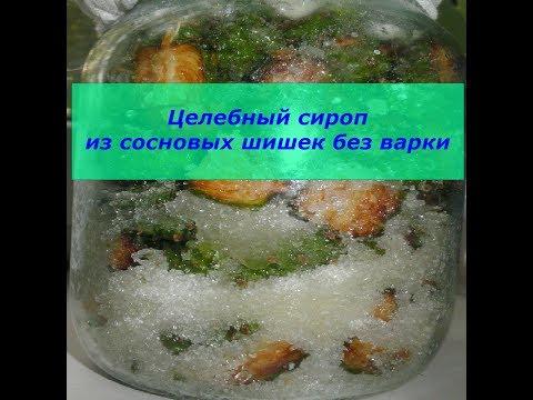 Целебный сироп из сосновых шишек без варки