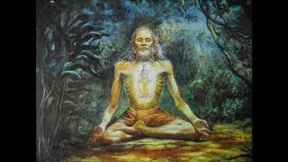 Brahmanand bhajan:Suno dil ko lga pyare:S.S. Ratnu