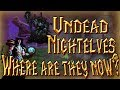What will happen to the Night elves and Undead?│World of Warcraft: Battle for Azeroth