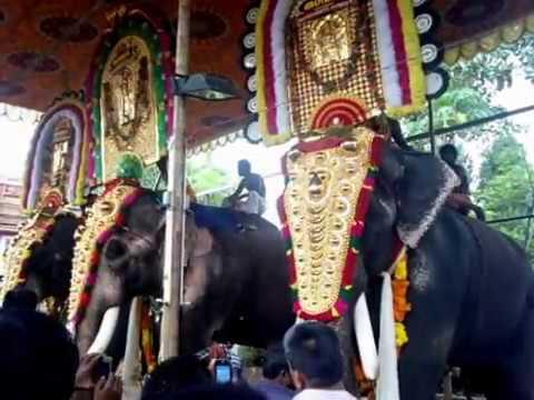 Mangalamkunnu Karnan Vs  Thechikottukavu Ramachandran /Elephants /kerala elephants