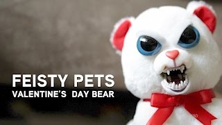 Feisty Pets - Valentine