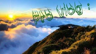 Pro Vlog :Пусть бегут неуклюже пешеходы по лужам!(гитара+баян)