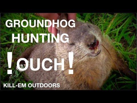 Groundhog Hunting NY