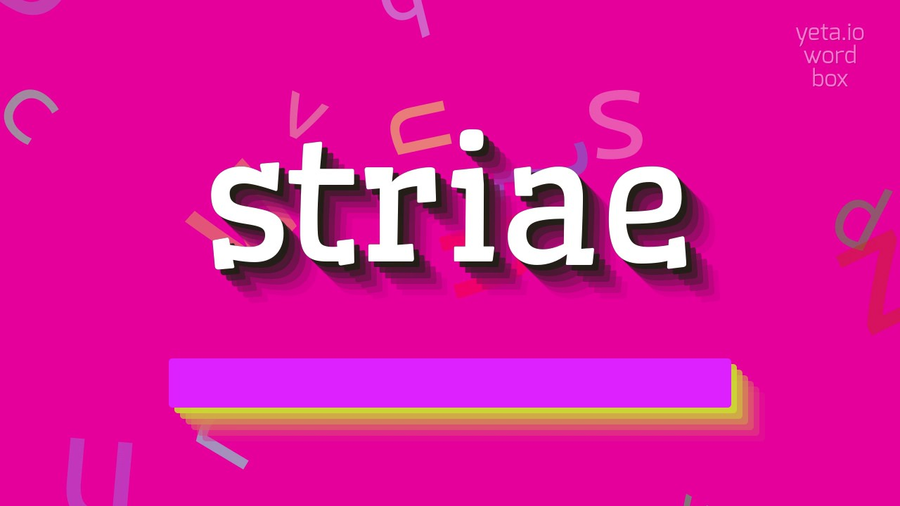 """Download How to say """"striae""""! (High Quality Voices)"""