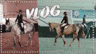 VLOG: Соревнования по выездке | Терский конный завод