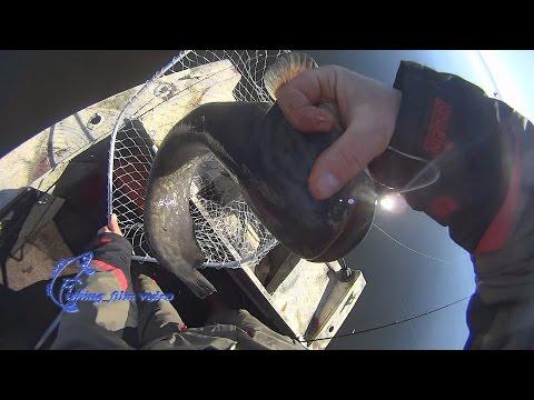 Рыбалка видео. Видео о рыбалке и ловле рыбы - Рыбколов!