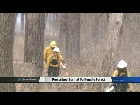 Prescribed Burn at Fontenelle Forest