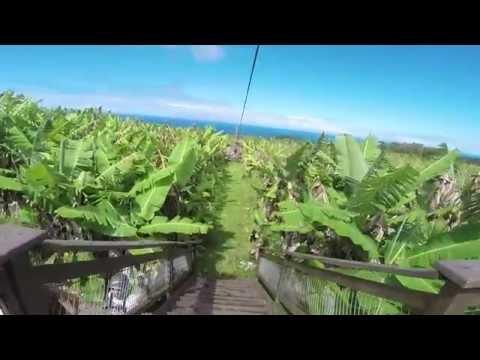 skyline-eco-adventures-zipline-hawaii---akaka-falls