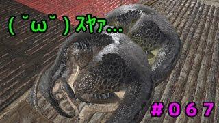 #067 メガロサウルスくんを叩いて起こして叩いて寝かす!!その1【ARK: Survival Evolved 実況】