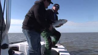matagorda trout and redfish on cajun thunder popping corks