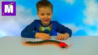 Гигантская сороконожка на инфракрасном управлении распаковка игрушки