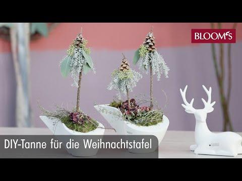 DIY-Tanne für die Weihnachtstafel | DIY Weihnachtsdeko | winter decoration | BLOOM's Floristik