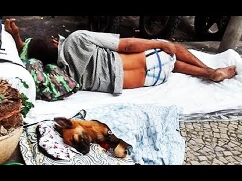 ¡Las imágenes más hermosas del mundo¡ (Perros y vagabundos) MORIRAS DE TERNURA