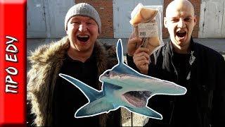 Готовим стейк из акулы и пробуем его на вкус. Почему мясо акулы на вкус как моча?