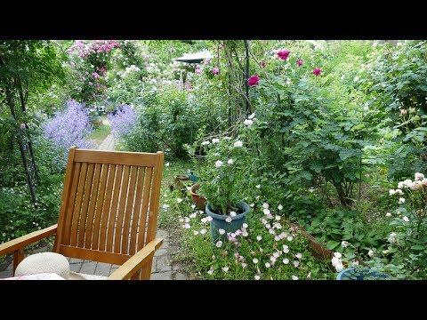 Open Garden 2017-Namba Garden in Tabara Okayama