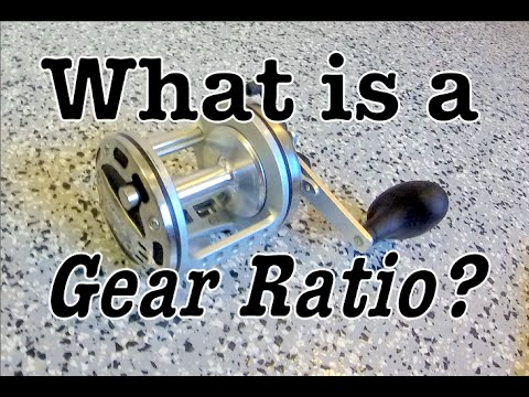What Is A Gear Ratio On A Fishing Reel?