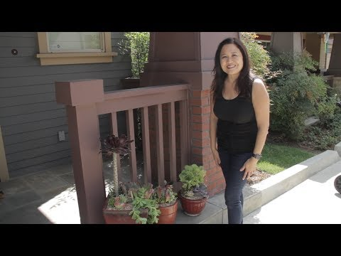 How To Plant 3 Different Succulent Container Gardens