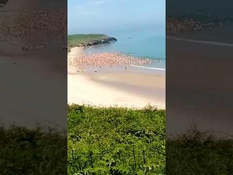 More Than 2,500 Women Skinny Dip in Irish Sea to Break World Record