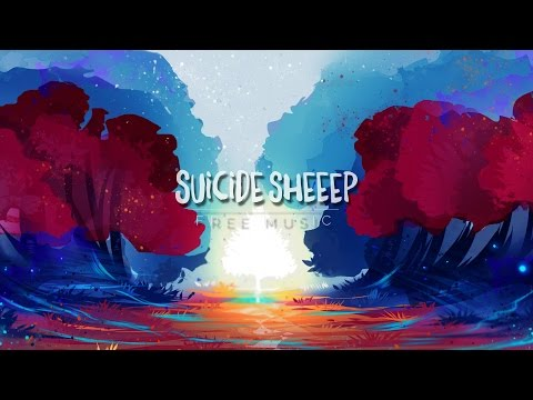 Finding Hope - Wonder videó letöltés
