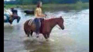 Horses playing in the lake after a LONG trail ride!!!