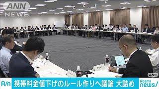 携帯料金の値下げ議論大詰め 総務省有識者会議(19/05/30)