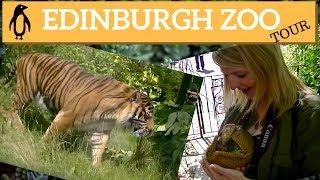 A Tour Of Edinburgh Zoo Scotland | Edinburgh Tours