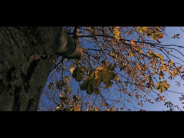 """Нова песна на Нокаут - """"Ноември"""""""
