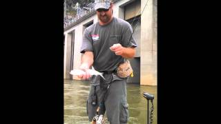 Catching Skipjack Herring with the Striper Soup guys