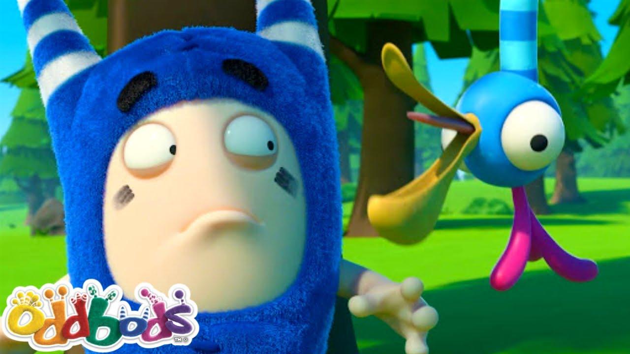 No Escape From The Feisty Big Bird | New Funny Cartoon | ODDBODS