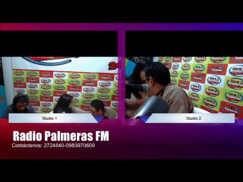 Radio Palmeras FM Tv y Radio Online