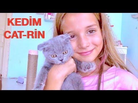 Bir Kedim Oldu. Cat-Rin İçin Odamda Yer Açıyorum. Ecrin Su Çoban