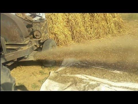cutting,organic dairy farming agriculture,Farming,Intelligent Technology,Cow Milking Machine,Feeding