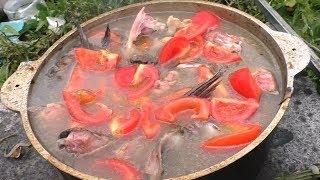 Праздничная уха из сазана, мой рецепт ухи из разной рыбы