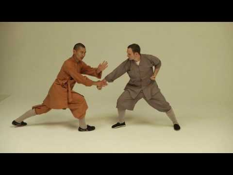 Shaolin Qin Na. Shifu Shi Yan Ti