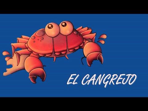 EL cangrejo, su