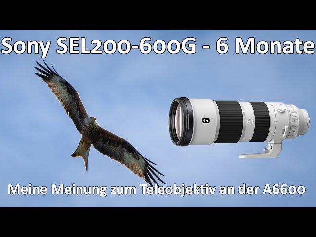 Sony SEL200-600G - 6 Monate später - Meine Meinung zum Supertele für den E-Mount - Langzeittest
