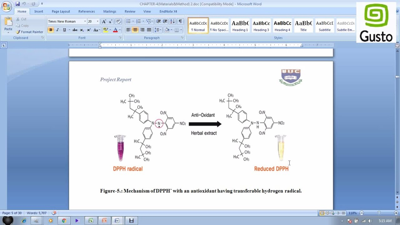 DPPH Test (with calculation of IC50) for evaluation of Antioxidant activity  (Bangla Tutorial )
