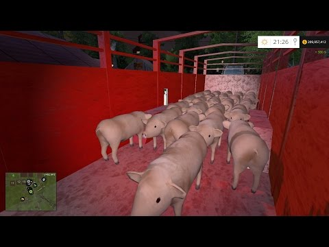 Farm Sim Saturday  HERE PIGGY PIGGY PIGGY pig farming