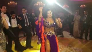 Alla Kushnir bellydancer Daret al ayoum-Wedding in Cairo