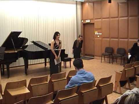 Brno - Erasmus IP Concert 2013